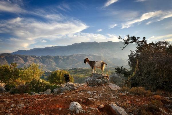 crete-nature